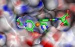 Multitasking Framework Accelerates Scientific Discovery