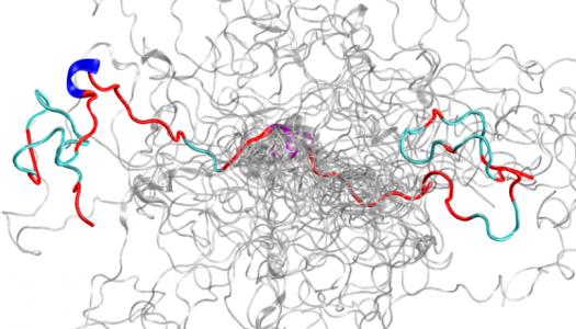 Titan Supercomputer and Spallation Neutron Source Unite to Probe the Inner Workings of c-Src kinase